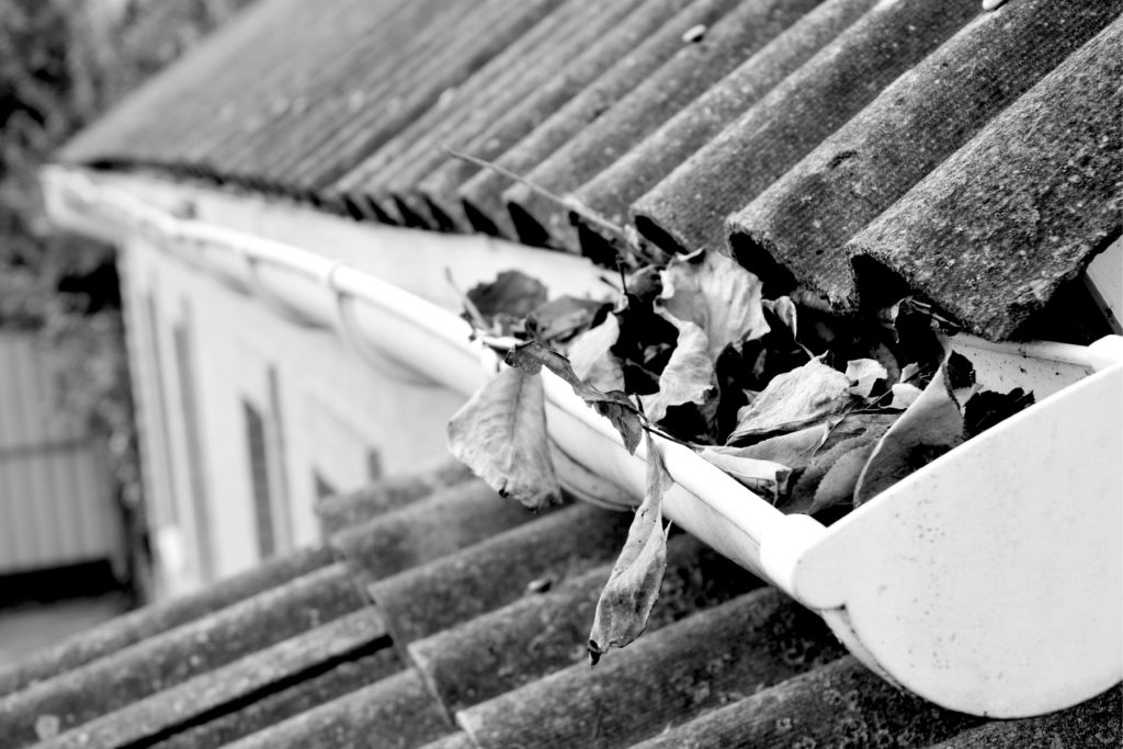 Fall leaves in roof gutters