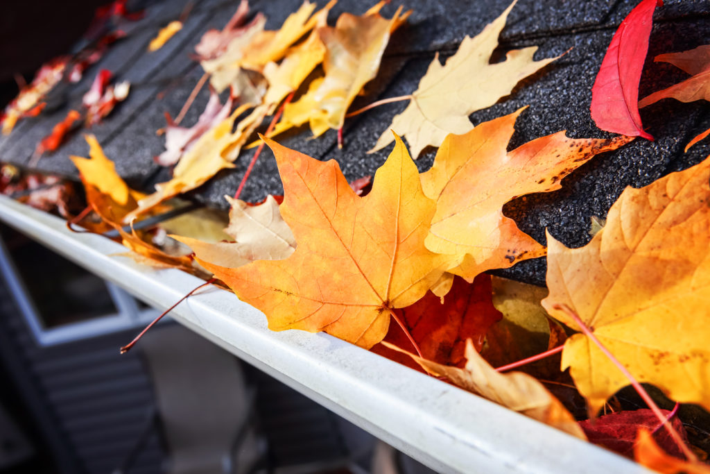 3 Reasons Fall is the Season for Roof Repair